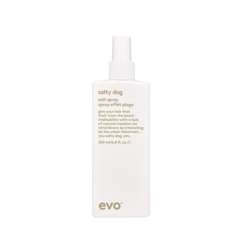 Hair ideas Evo Salty Dog Salt Spray